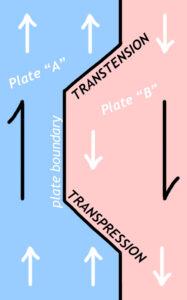 """Cartoon """"map view"""" image showing two plates with an irregular boundary. A zone where the plates are moving toward one another on an obliquely-oriented boundary is labeled """"TRANSPRESSION."""" A zone where the plates are moving away from one another on an obliquely-oriented boundary is labeled """"TRANSTENSION."""""""