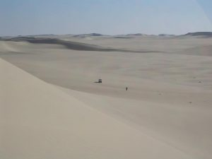 The Sahara Desert, a sea of sand or erg.