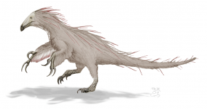 It is a feathered dinosaur with large hand claws