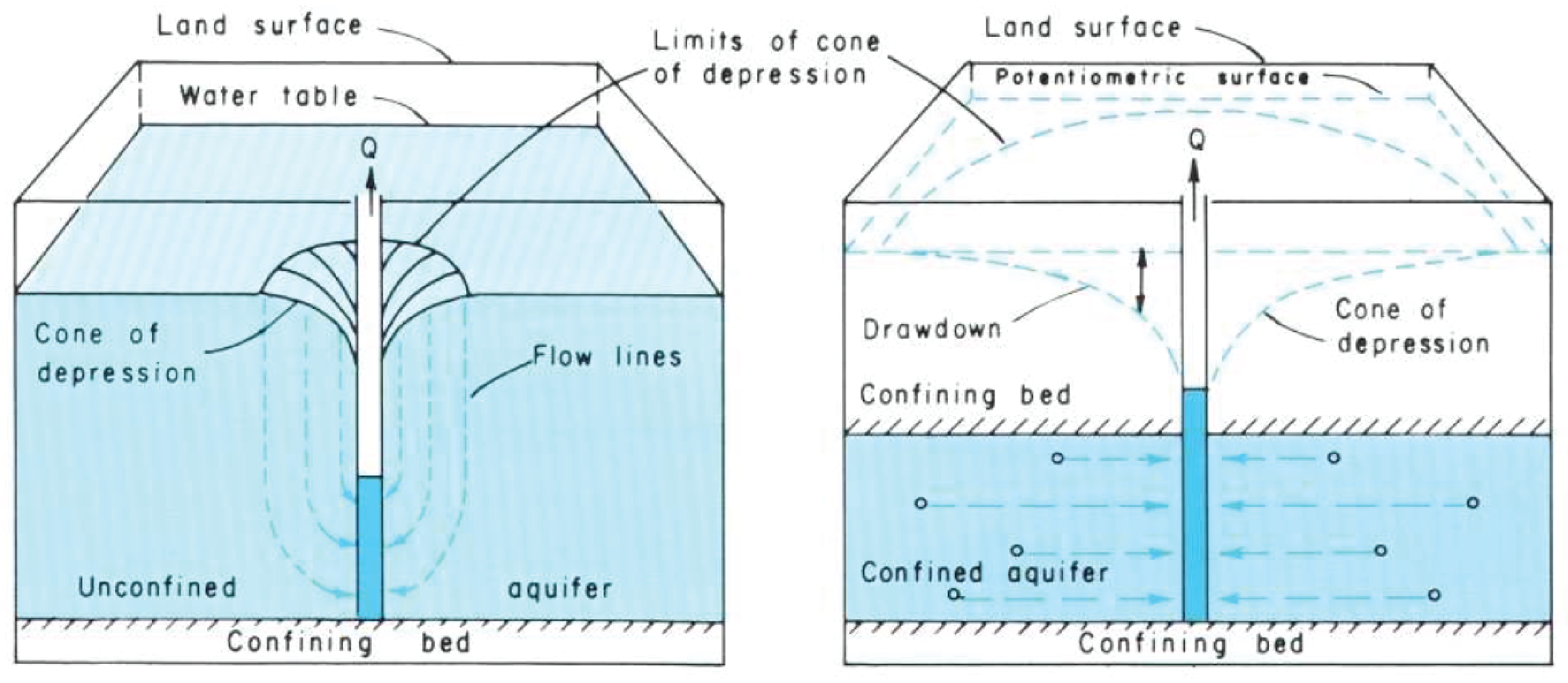 The shape of the potentiometric surface or water table around a pumping well is cone-shaped, where groundwater level has the greatest drawdown near the well.
