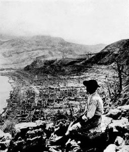 A man is seen overlooking the destroyed city