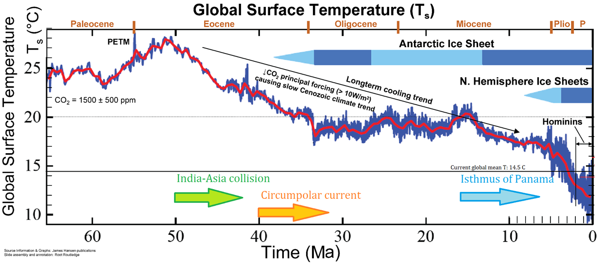 Graph showing decrease of average surface temperature from 23 degrees Celsius 50 million years ago to 12 degrees Celsius near present.