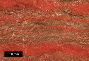 The rock shows red and brown layering.