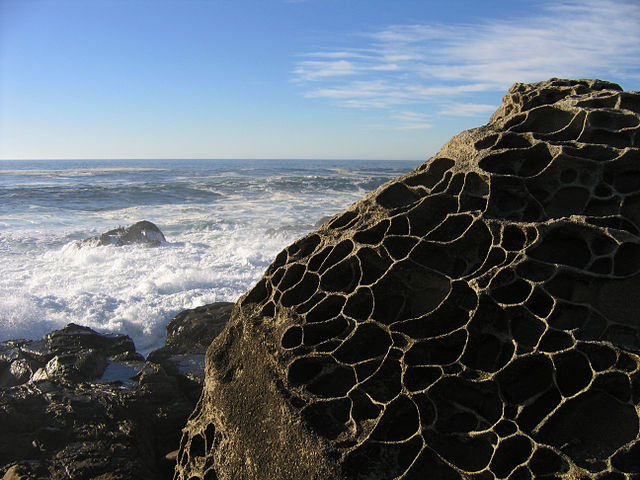 The rock has many holes from the salt erosion.