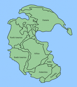 Pangaea has a crescent shape.