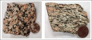 Two rocks with very similar colors. One is a granite and another is a gneiss that has aligned dark minerals.