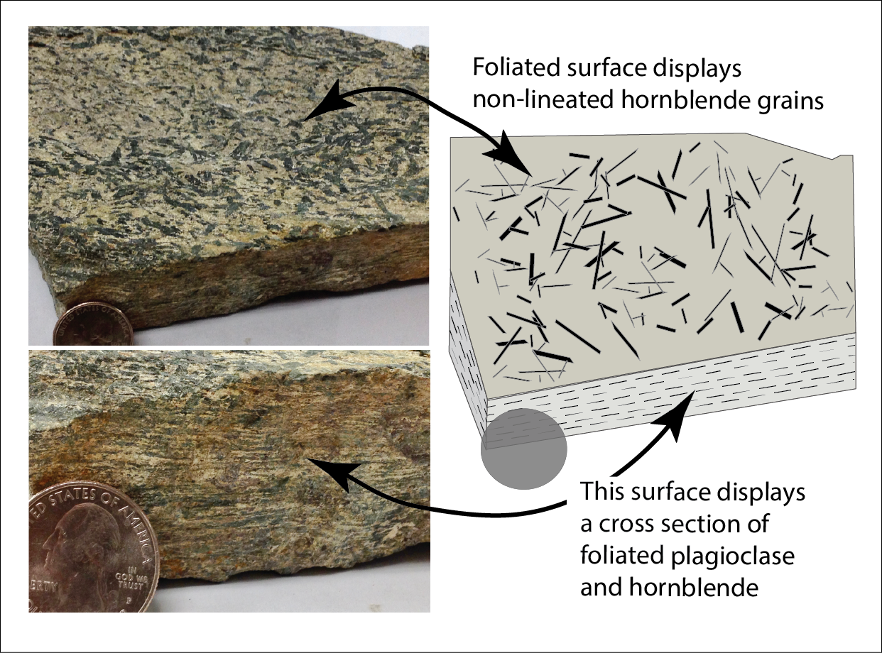 Foliated surface displays non-lineated hornblende grains. A cross-section displays a cross section of foliated plagioclase and hornblende