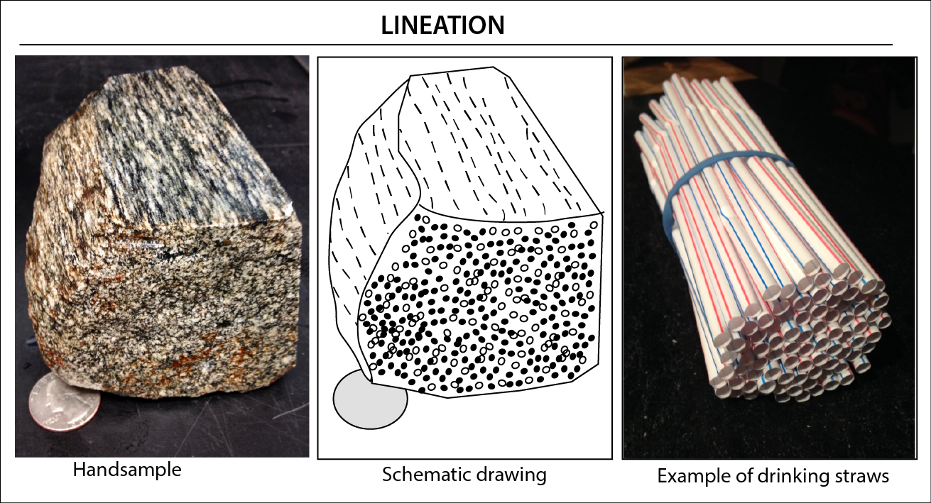 Lineation is aligned linear features in a rock. An example in the figure is a bundle of aligned straws.