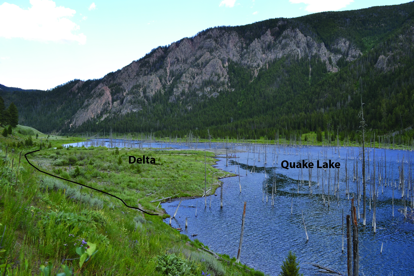 Delta in Quake Lake Montana. Deposition of this delta began in 1959, when the Madison river was dammed by the landslide caused by the 7.5 magnitude earthquake.