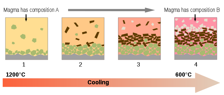 Complicated diagram showing minerals settling out in the magma chamber and thus making the remaining liquid magma (the melt) more silica-rich in composition.