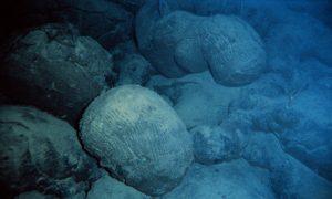 Pillow basalt on sea floor near Hawaii.
