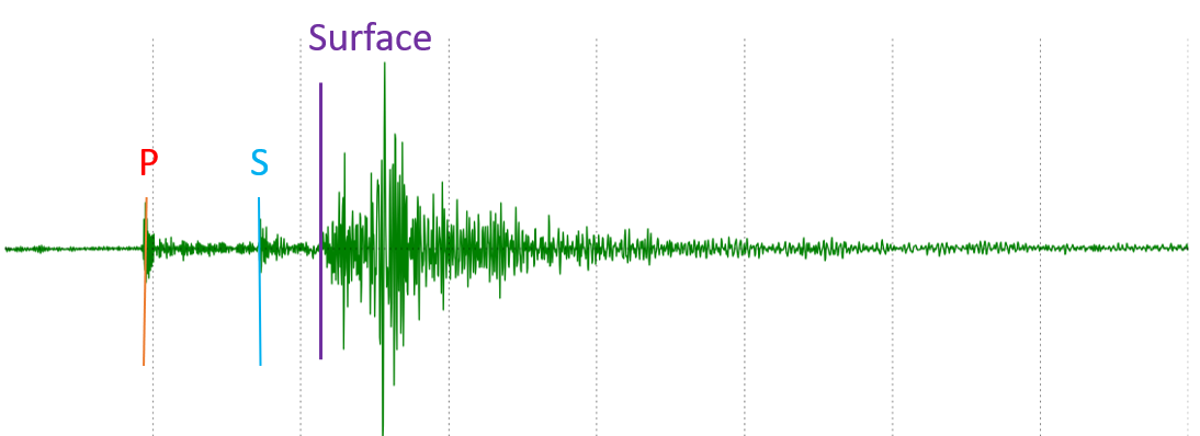Squiggly lines along a horizontal axis. When the P-wave arrives, a small amplitude squiggle shows up. Then the S-wave arrives, and another small-amplitude squiggle shows. Finally, the surface-waves arrive, and large-amplitude waves show up, two to three times the amplitude of the body waves. Then the wave taper off and the line becomes essentially horizontal again.